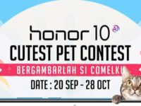 Make your pet famous and win an honor 10