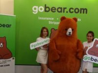 New GoBear search engine gets you the bear essentials on financial products