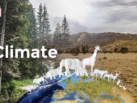 TikTok and the IFRC are teaming up in #ForClimate campaign to raise awareness of climate change
